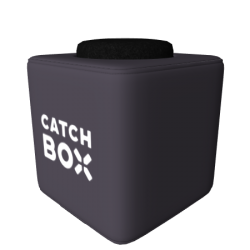 Catchbox Pro Wurfmikrofon Customized - Wunschfarbe ohne Catchbox Logos - Sennheiser ew 172 G3-1G8 Wireless-Komplettset